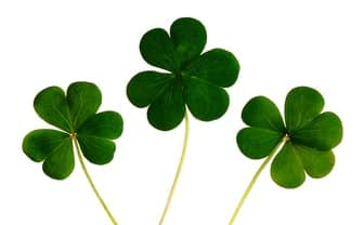6 Ideas To Have More Fun This St. Patrick's Day