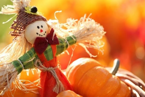 Halloween activities for your family