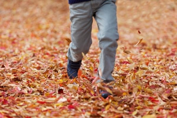 Fall bucket list 2021, ideas for going places