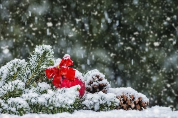 12 days of Christmas self care: get out in nature
