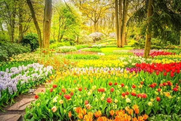 Unique family traditions - beautiful garden in spring